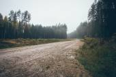 Country gravel road in the forest. Retro grainy film look. — Stockfoto