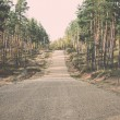 Country gravel road in the forest - retro, vintage — Stock Photo #60229983