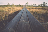 Wooden footpath on the bog - retro, vintage — 图库照片