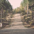 Country gravel road in the forest - retro, vintage — Stock Photo #60230101