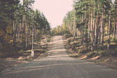 Country gravel road in the forest - retro, vintage — Stock Photo