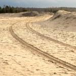 Car tyre tracks on the beach sand — Stock Photo #61458887
