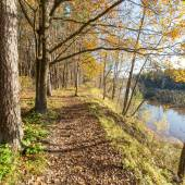 Autumn colored tourism trail in the woods — Stock Photo