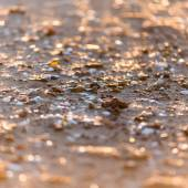 Abstract shiny rocks on the beach — Zdjęcie stockowe