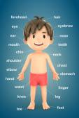 Boy showing parts of the body — Stock Photo