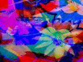 Abstrakt blumen Hintergrund — Stockfoto