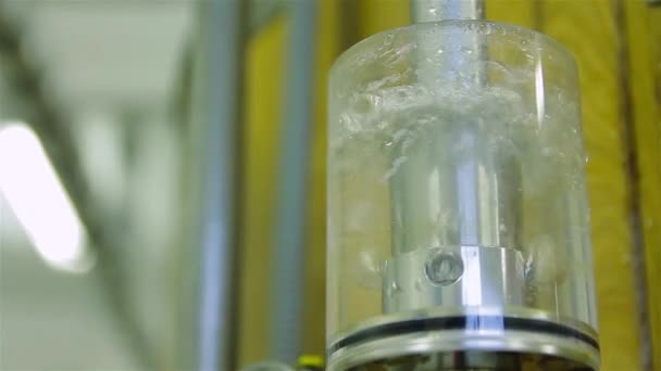 Production of live beer brewing — Vidéo