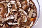 Dried porcini mushrooms to soak — Stock Photo