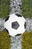 Fußball auf dem rasen — Stockfoto