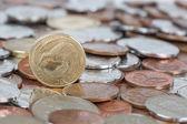 Kiwi Dollar — Zdjęcie stockowe
