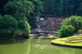 Green park — Foto de Stock