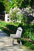 Lonely bench in the garden — Stock Photo