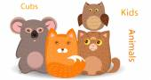 Cubs foxes, cats, koalas, owls — Stock Vector