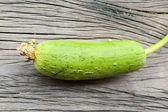 Green Sponge Gourd on wooden floor — Stock Photo