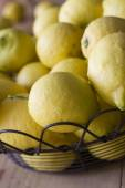 Picked lemons from the garden — Stockfoto