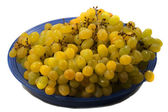 The grapes — Stock Photo