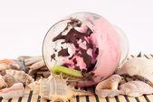 Ice cream with Seashells — Stockfoto