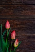 Red tulips flowers on wooden background. Top view, copy space. — Stock Photo