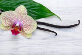 Vanilla pods and orchid flower on wooden background. Copy space. — Stock Photo