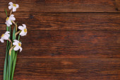 Daffodils on wooden background, copy space — Stock Photo