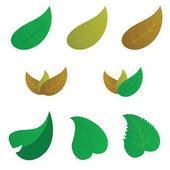 Leaf color vector — Vecteur