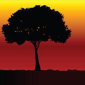 Tree black vector silhouette — Stock Vector