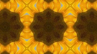 Sunflower kaleidoscope background — Stock Video