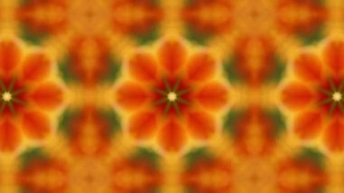 Kaleidoscope with orange tulips — Stock Video