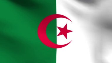 National flag of Algeria — Stock Video
