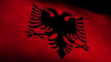National flag of Albania — Stock Video
