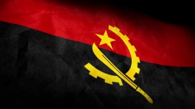 National flag of angola — Stock Video