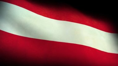 National flag of  austria — Stock Video