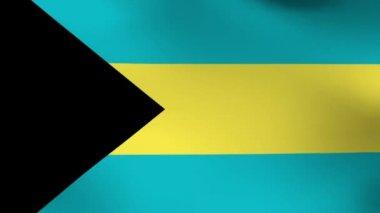 National flag of  Bahama — Stock Video