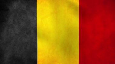 National flag of Belgium — Stock Video