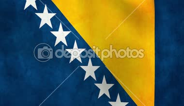 National flag of Bosnia and Herzegovina — Stock Video