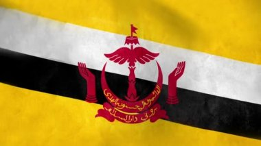 National flag of Brunei — Stock Video