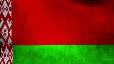 National flag of Belarus — Stock Video