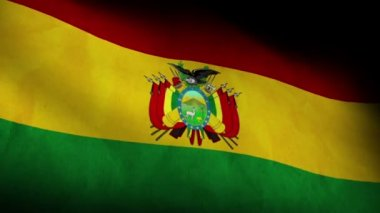 National flag of Bolivia — Stock Video