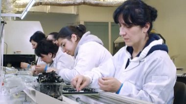 Workers Building Circuit Boards in Electronics Factory — Stock Video