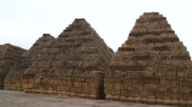 Stacks of bales at the field — Stock Video