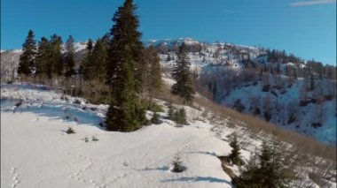 Maior estância climática alpina — Vídeo stock