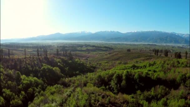 Montañas con bosque y del Prado — Vídeo de stock