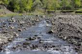 River flows near village with forest on hill — Stock Photo