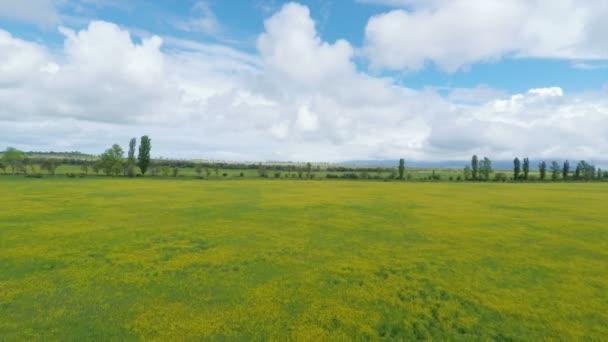 Paisaje de campo verde bajo un cielo nublado, aérea — Vídeo de stock