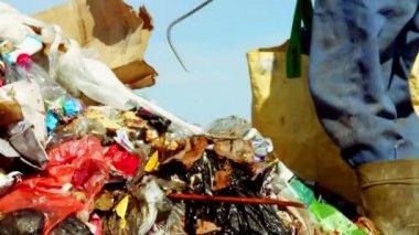 Man looking for something in Garbage — Stock Video