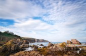 St. Abbs, Scotland — Stock Photo