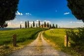 Val d'Orcia farmhouse — Stock Photo