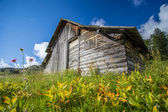 Old alpine hut — Stock Photo