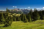 Alpe di Siusi (Dolomiti) — Stock Photo