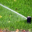 Garden automatic irrigation system, working sprinkler — Fotografia Stock  #67302501